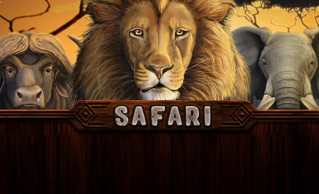Safari Online Casino Slot Review